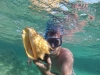 Martin med lambi/conch, Tobago Cays