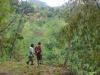 Hike med Bagga i Walilabou