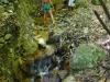 Varm bäck vid svavelberget i Soufriere