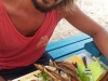 Friterad ballyhoo och kallrökt marlin sallad. På Grand Anse, Martinique