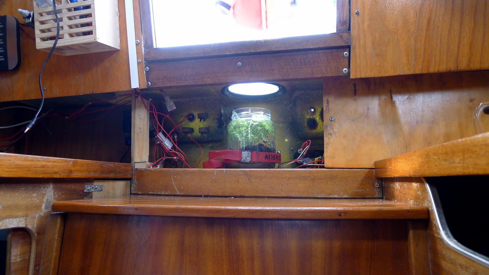 I sann Waterworld-anda har vi en planta på båten. Kommer ha en panel framför men får ljus via gamla kompassfönstret.