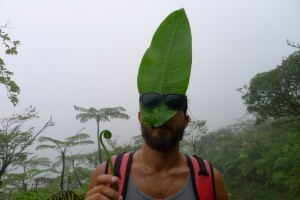 På väg upp till toppen av La Soufriere träffade vi djungelpåven